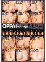 OPPAIMANIA PERFECT BEST 4 Jikan - OPPAIMANIA PERFECTBEST4時間 [ppbd-006]
