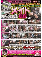 T Railway AK Station Former Station Master Posting Videos of Fare-Evading Maids - T鉄道 AK駅 元駅長投稿 不正乗車・キセルしたメイドたち [plod-200]