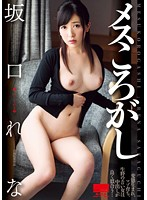 Knocking Down Bitches Starring Rena Sakaguchi - メスころがし 坂口れな [hodv-21131]