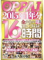 TITTIES In The Year 2015 - Full Recordings From All Titles!! 16 Hours - OPPAI 2015年1年分 全タイトルまるごと収録!!16時間 [ppbd-118]