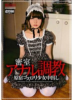 Anal Breaking In Behind Closed Doors Rika Shimazaki - 密室アナル調教 島崎りか [gros-012]