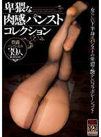 Obscene Pleasure Pantyhose Collection - 卑猥な肉感パンストコレクション [jfb-043]