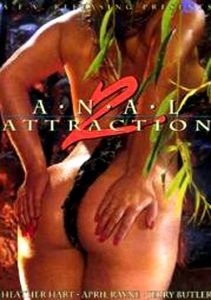 Anal Attractions 2